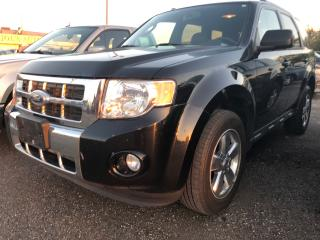 Used 2010 Ford Escape Limited for sale in Pickering, ON