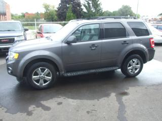 Used 2009 Ford Escape XLT for sale in Waterloo, ON