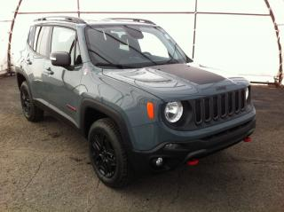 New 2018 Jeep Renegade Trailhawk for sale in Ottawa, ON