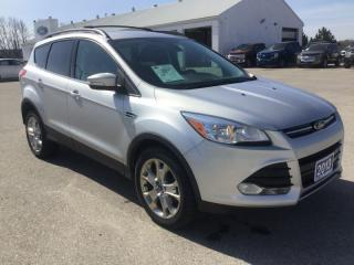 Used 2013 Ford Escape SEL | 4WD | One Owner | Nav | Bluetooth for sale in Harriston, ON