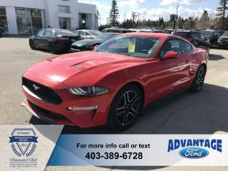 Used 2019 Ford Mustang EcoBoost Premium Heated/Cooled Seats  - Leather Seats for sale in Calgary, AB