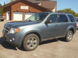 Used 2010 Ford Escape XLT for sale in Omemee, ON