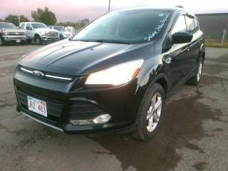 Used 2013 Ford Escape , LOW MILEAGE, NO ACCIDENTS!! SE for sale in Saint John, NB