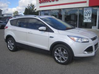 Used 2015 Ford Escape Titanium for sale in Simcoe, ON