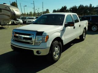 Used 2014 Ford F-150 XLT SuperCrew 6.5-ft. Bed EcoBoost 4WD for sale in Burnaby, BC