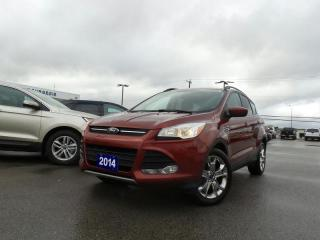 Used 2014 Ford Escape SE 1.6L I4 for sale in Midland, ON