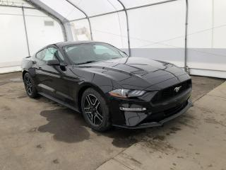 Used 2019 Ford Mustang EcoBoost Fastback for sale in Meadow Lake, SK