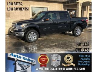 Used 2014 Ford F-150 XTR for sale in Winnipeg, MB
