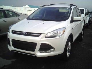 Used 2015 Ford Escape SE for sale in Winnipeg, MB