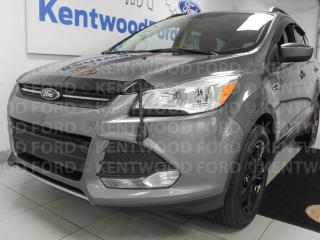 Used 2014 Ford Escape SE 4WD, NAV, back up cam, heated power seats for sale in Edmonton, AB