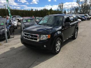 Used 2009 Ford Escape XLT 4WD V6 for sale in Newmarket, ON