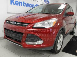 Used 2016 Ford Escape SE 4WD ecoboost, NAV, heated power leather seats and back up cam for sale in Edmonton, AB