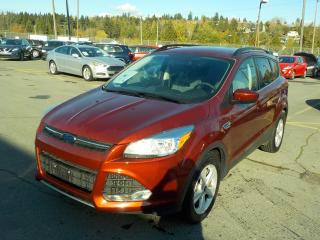Used 2015 Ford Escape SE FWD Ecoboost for sale in Burnaby, BC