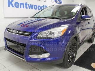Used 2016 Ford Escape Titanium 4WD, NAV, sunroof, heated power leather seats, power liftgate, push start/stop for sale in Edmonton, AB
