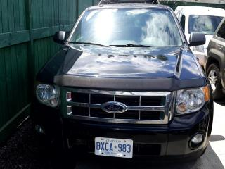 Used 2010 Ford Escape 4WD 4DR V6 AUTO XLT for sale in Scarborough, ON