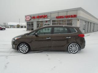 Used 2015 Kia Rondo EX for sale in Owen Sound, ON