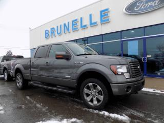 Used 2012 Ford F-150 FX4 3,5L ecoboost Pneu neufs for sale in St-Eustache, QC