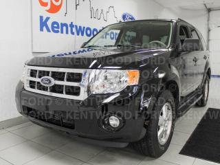 Used 2008 Ford Escape XLT 4WD, sunroof, keyless entry, cream interior with black leather seats for sale in Edmonton, AB