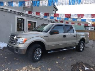 Used 2009 Ford F-150 FX4 for sale in Hamilton, ON