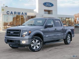 Used 2013 Ford F-150 FX4 LEATHER MOONROOF for sale in Carman, MB