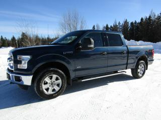 Used 2016 Ford F-150 Cab SuperCrew 4RM 157 po XLT for sale in Thetford Mines, QC