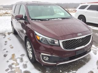 Used 2017 Kia Sedona SXL+ | 7 Passenger | Sunroof for sale in Stratford, ON