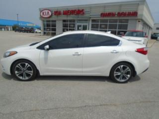 Used 2015 Kia Forte EX w/Sunroof for sale in Owen Sound, ON