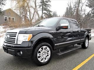 Used 2010 Ford F-150 PLATINIUM for sale in Richmond Hill, ON
