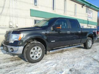 Used 2012 Ford F-150 Cab SuperCrew 4RM 145 po XLT for sale in St-Jérôme, QC
