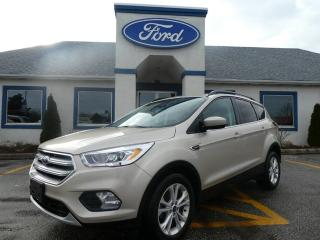 Used 2017 Ford Escape SE for sale in Essex, ON