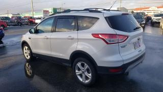 Used 2013 Ford Escape SE for sale in Mount Pearl, NL