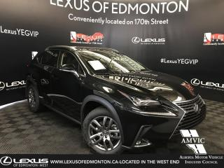 New 2019 Lexus NX 300 Luxury Package for sale in Edmonton, AB