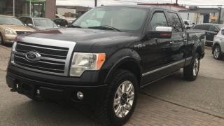 Used 2010 Ford F-150 SuperCrew PLATINUM LEATHER UPGRADED SPEAKERS for sale in North York, ON