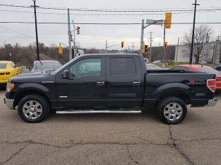 Used 2012 Ford F-150 XTR Crew Cab for sale in Kitchener, ON