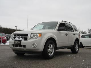 Used 2010 Ford Escape XLT / ACCIDENT FREE / LOCAL SUV for sale in Newmarket, ON