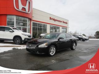 Used 2009 Nissan Maxima 3.5 SV - LOW PRICE - WELL MAINTAINED for sale in Bridgewater, NS