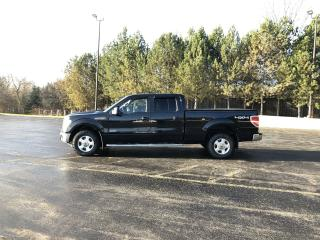 Used 2014 Ford F-150 XLT 4X4 for sale in Cayuga, ON