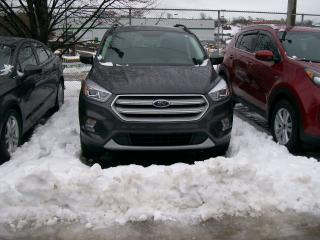 Used 2018 Ford Escape SEL for sale in Saint John, NB