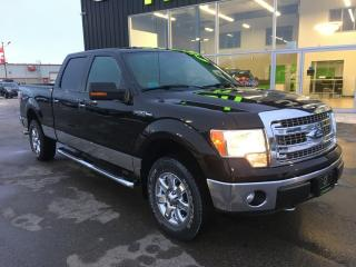 Used 2013 Ford F-150 XLT for sale in Ingersoll, ON