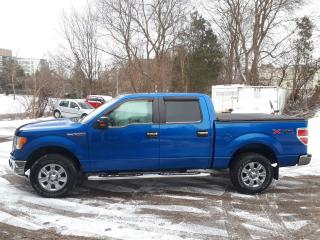 Used 2010 Ford F-150 XLT/XTR for sale in Guelph, ON