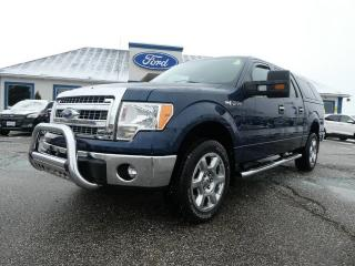 Used 2014 Ford F-150 XLT for sale in Essex, ON