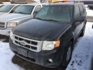 Used 2009 Ford Escape XLT for sale in Alliston, ON