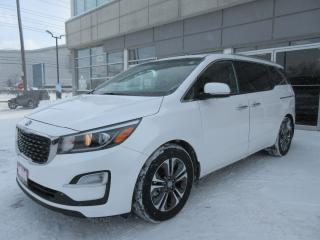 Used 2019 Kia Sedona SX for sale in Mississauga, ON