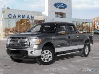 Used 2013 Ford F-150 for sale in Carman, MB
