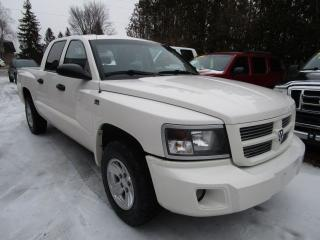 Used 2009 Dodge Dakota SXT for sale in Cookstown, ON
