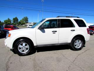 Used 2009 Ford Escape XLT 4WD V6 LEATHER SUNROOF CERTIFIED 2YR WARRANTY BLUETOOTH ALLOYS for sale in Milton, ON