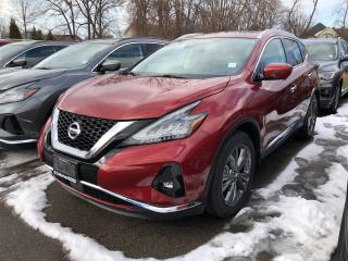 New 2019 Nissan Murano Platinum for sale in St. Catharines, ON