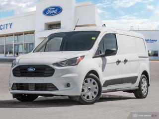 Used 2019 Ford Transit Connect Van XLT for sale in Winnipeg, MB