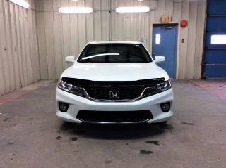 Used 2014 Honda Accord EX-L W/NAVI for sale in Ottawa, ON