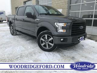 Used 2017 Ford F-150 XLT for sale in Calgary, AB